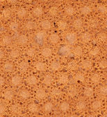 Background of reverse side biscuit. Macro. — Stock Photo