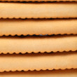 Background of stake saltine sodcracker. — Stock Photo #29049559