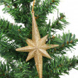 Golden star on a christmas branch — Stock Photo