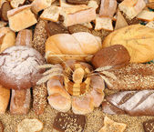 Composition of fresh bread, grain and wheat. — Stock Photo