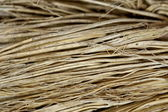 Close up detail of a broom texture. — Stock Photo