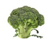 Fresh healthy brocoli. — Stock Photo