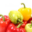 Multi-colour peppers. — Stock Photo