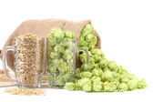 Two mugs with barley and hop. — Stock Photo