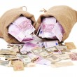 Two full sack with money. — Stock Photo