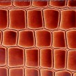 Red brown color of crocodile skin. — Stock Photo