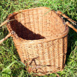 Opened picnic basket in the grass. — Stock Photo