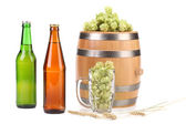 Barley and hop composition. — Stock Photo