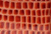 Couro marrom vermelho fechar. — Fotografia Stock