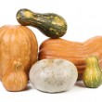 Composition of fresh orange pumpkin — Stock Photo