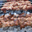 Appetizing fresh meat shish kebab. — Stock Photo