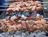 Appetizing fresh meat shish kebab. — Stock Photo