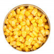 Fresh corn in can. — Stock fotografie