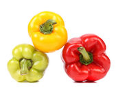Colourful ripe peppers. — Stock Photo