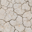 Background of dry cracked earth — Stock Photo
