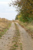 Rural road autumn view — Stock Photo