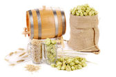 Composition of hop and barley. — Stock Photo