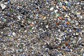 Close up of beach boulder. — Stock Photo
