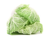 Tasty Chinese cabbage. — Stock Photo