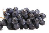 Branch of black ripe grapes. — Stock Photo