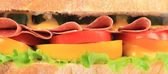 Big fresh sandwich. Close up. — Stock Photo