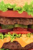Hamburger katmanları kapatın. — Stok fotoğraf