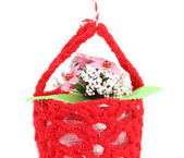 Flower in a basket. — Stock Photo