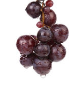 Bunch of ripe and juicy black grapes. — Stock Photo