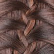 Long Brown Hair Braid. Back View. — Stock Photo #41669989
