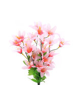 Close up of flower bouquet. — Stock Photo