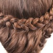 Long Brown Hair Braid. Back View. — Stock Photo