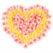 Pink and yellow flowers in form of heart. — Stock Photo #41675567