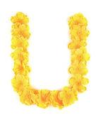 Bokstaven u blomma alfabetet. — Stockfoto