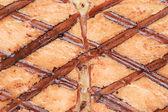 Grilled salmon texture — Photo