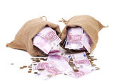 Two bags with much money — Stock Photo