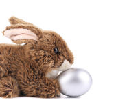 Easter bunny with egg — Stock Photo