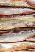 Golden smoke sprats — Stock Photo