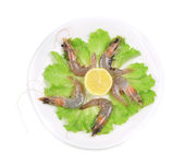 Raw tiger shrimps on plate — Stock Photo