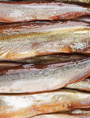 Duman-kurutulmuş balık — Stok fotoğraf