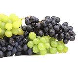 Ripe grapes. — Stock Photo