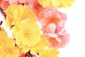 人造花. — 图库照片
