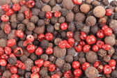 Color peppercorn. — Stock Photo