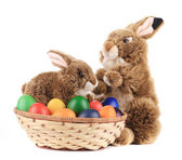 Easter eggs and bunnies. — Stock Photo
