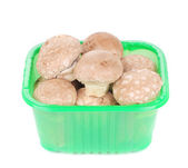 Brown champignons in plastic box. — Stock Photo