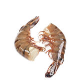 Two raw shrimps. — Stock Photo