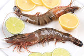 Raw tiger shrimps on plate. — Stock Photo
