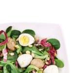 Mushroom salad with pine nuts and radicchio. — Stock Photo #45656843