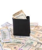 Purse with dollar bills. — Stock Photo