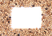White peppercorn in the form of frame. — Stock Photo