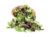 Wicker basket with lettuce leaves. — Stock Photo
